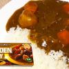 SBゴールデンカレー1種類を普通に作ってみた【市販ルーのカレーライス-第3弾】I made curry deliciously#80